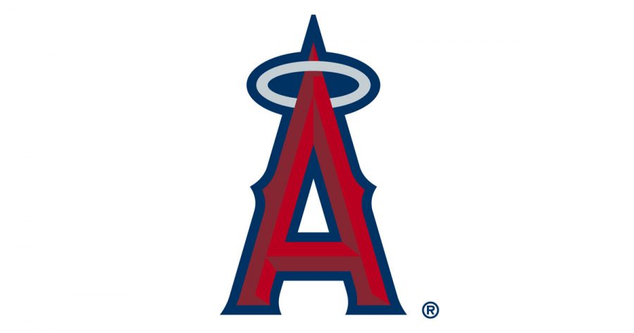 """""""I enjoy watching the Los Angeles Angels. Some of my family lives in Anaheim and one time I went to a game and it was so cool. Mike Trout is also one of my favorite players, senior Nick DeBeer said."""