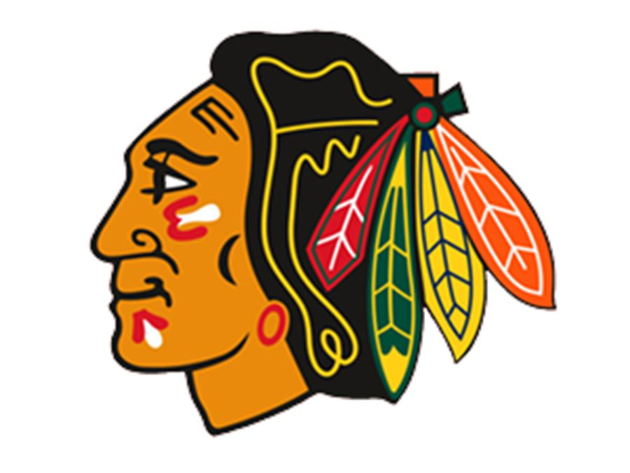 """One side of my family is from Chicago, so I am a big Blackhawks and White Sox fan. I was born in Chicago, so that's why I follow Chicago teams,"