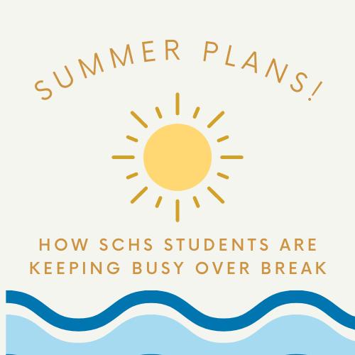 Student's Summer Plans